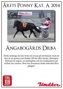 dilba